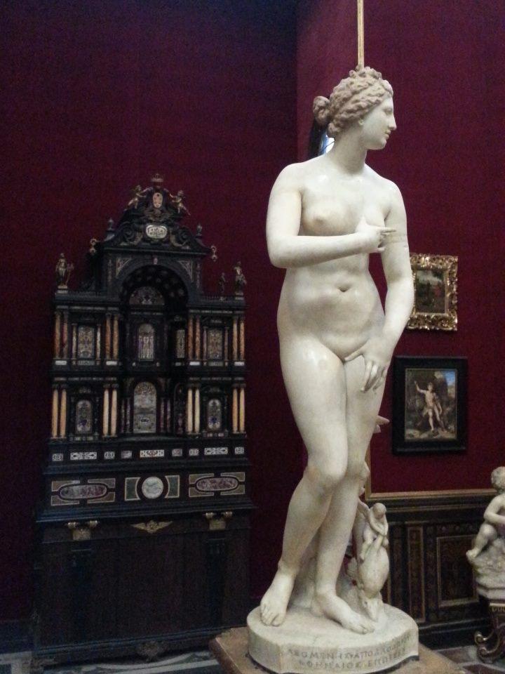 Venere Medici (credits: Antonia Falcone)