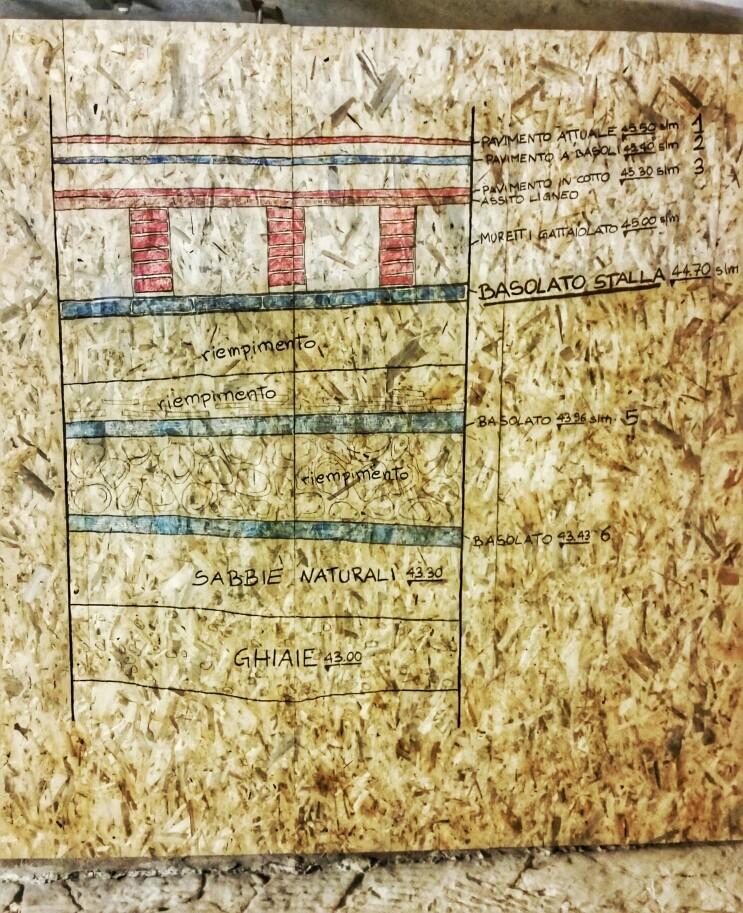 La sezione disegnata sul cantiere con la successione dei pavimenti nell'ambiente delle stalle medicee